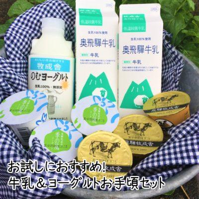 <お手頃価格>牛乳&ヨーグルトセット【シェア得・おまけ付き】の画像
