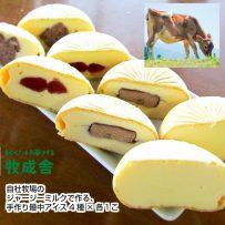 自社牧場のジャージーミルクで作る最中アイス4種セット(4個入り)の画像