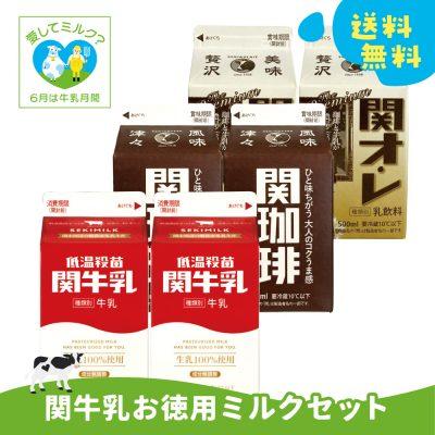 岐阜牛乳応援キャンペーン!【関牛乳 徳用牛乳セット】の画像