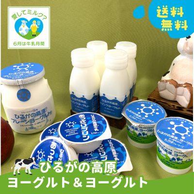 牛乳応援キャンペーン!【ひるがの高原ヨーグルト&プリン】の画像